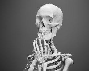 Skeleton pondering life